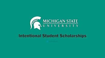 AQShning Michigan universitetida o'qish uchun to'liq va qisman moliyalashtiriluvchi grant dasturi
