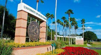 AQShning Janubiy Florida universitetida  bakalavr bosqichida o'qish uchun grant dasturi