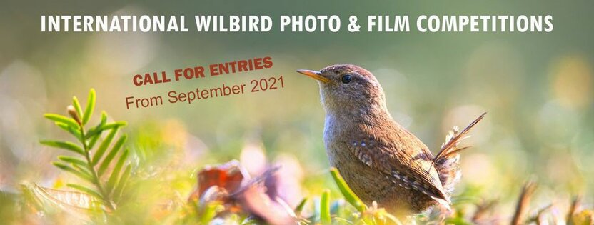 International Wildbird Photo Competition -  Qushlar haqida Fototanlov: €1500  yutib olish va Fransiyaga sayohat qilish imkoniyati